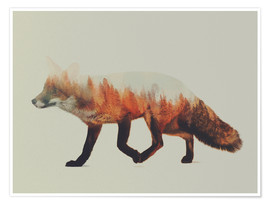 Póster  Norwegian Woods The Fox - Andreas Lie