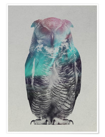 Póster  Owl in the aurora borealis - Andreas Lie