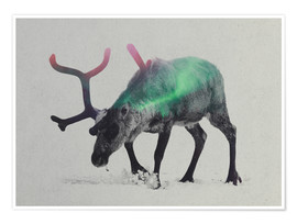 Póster reindeer in the aurora borealis