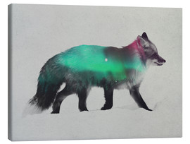 Lienzo  Fox In The Aurora Borealis - Andreas Lie