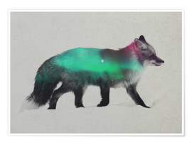 Póster  Fox In The Aurora Borealis - Andreas Lie
