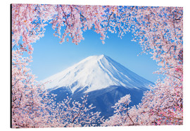 Cuadro de aluminio  Mount Fuji in Japan during the cherry blossom in spring - Jan Christopher Becke