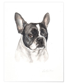 Póster  Bulldog francés - Lisa May Painting