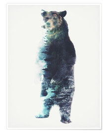 Póster  Bear in the Woods - Barrett Biggers