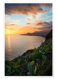 Póster Bay of Funchal at Sunset, Madeira
