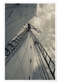 Póster  Massachusetts, Gloucester, Schooner Festival, sails and masts - Walter Bibikow