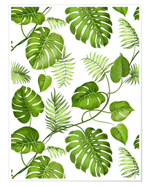 Póster  Monstera y palmeras