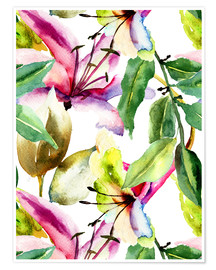 Póster  Lily in Watercolor