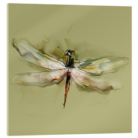 Cuadro de metacrilato  Dragonfly in watercolor