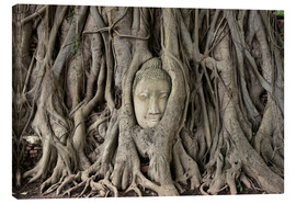 Lienzo  Buddha statue in the tree roots at Wat Mahathat