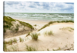 Lienzo  Sand dunes on the Baltic sea