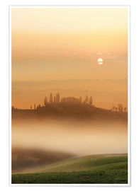Póster Fog in Tuscany