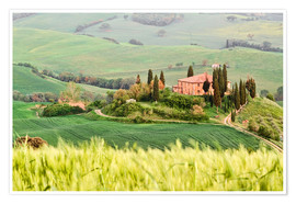 Póster typical Tuscany landscape
