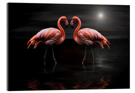 Cuadro de metacrilato  Flamingos at night - Heike Langenkamp