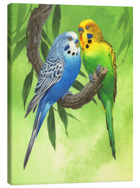 Lienzo  25917 Budgies on Green Background - John Francis