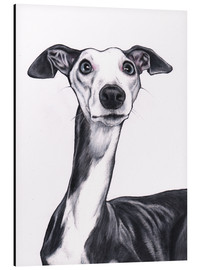 Aluminio-Dibond  Whippet, Blue and white - Jim Griffiths