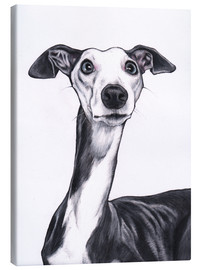 Lienzo  Whippet, Blue and white - Jim Griffiths