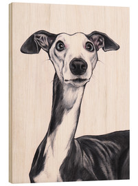 Madera  Whippet, Blue and white - Jim Griffiths