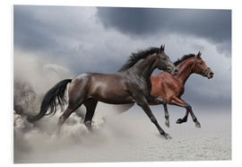 Forex  Horses in the storm