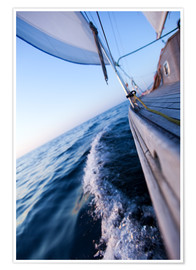Póster Sailing in summer
