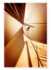 Póster  Sail in the wind I