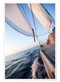 Póster  Sailing in Sunrise