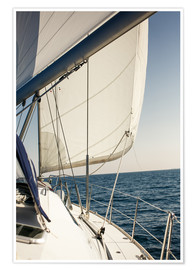 Póster  White sails in the open sea