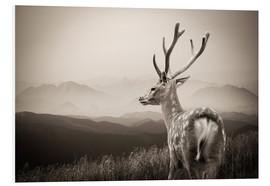 Cuadro de PVC  Stag in the mountains
