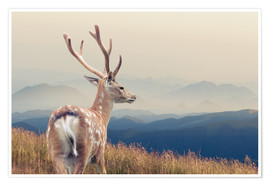 Póster  Deer standing on the mountain