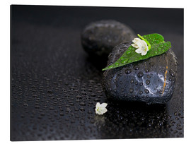 Cuadro de aluminio  Black stones with leaf