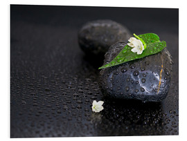 Cuadro de PVC  Black stones with leaf