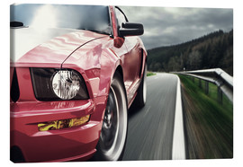 Lienzo  Red Mustang