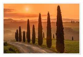 Póster  Golden Morning - Tuscany - Achim Thomae
