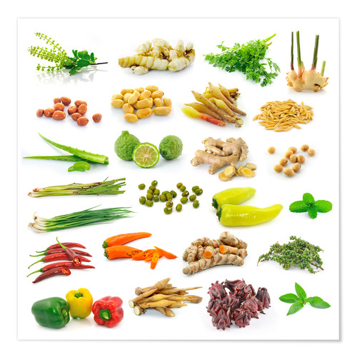 Póster Vegetable and herb collection