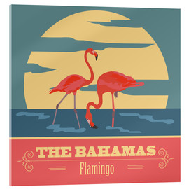 Cuadro de metacrilato  The Bahamas - Flamingo