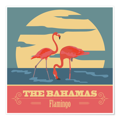 Póster The Bahamas - Flamingo