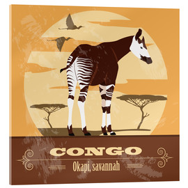 Metacrilato  Congo - Okapi - Kidz Collection