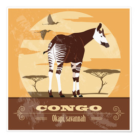 Póster  Congo - Okapi - Kidz Collection