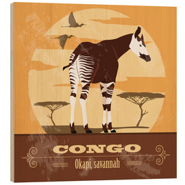 Cuadro de madera  Congo - Okapi - Kidz Collection