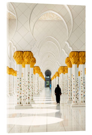 Metacrilato  Sheikh Zayed Mosque in Abu Dhabi