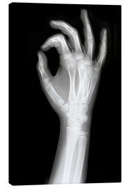 Lienzo  X rayed OK sign