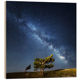 Madera  Milky Way - night sky with stars in Crimea
