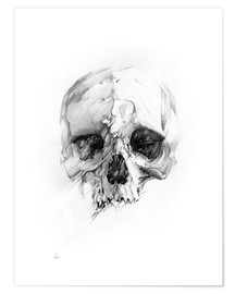 Póster  Skull - Alexis Marcou