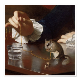 Póster  Boy with a Flying Squirrel (Detail) - John Singleton Copley