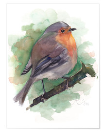 Póster  Red Robin, bird watercolor - Verbrugge Watercolor