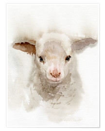Póster  Lamb Watercolor - Verbrugge Watercolor