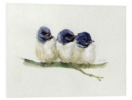 Forex  3 little swallows - Verbrugge Watercolor