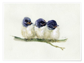 Póster  3 little swallows - Verbrugge Watercolor