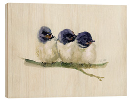Madera  3 little swallows - Verbrugge Watercolor