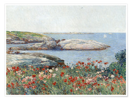Póster Poppies, Isles of Shoals